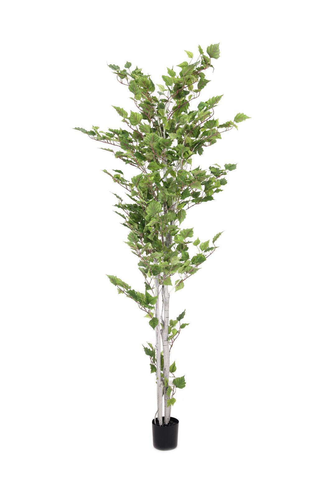 Image of   Kunstig Birch tree, 180cm