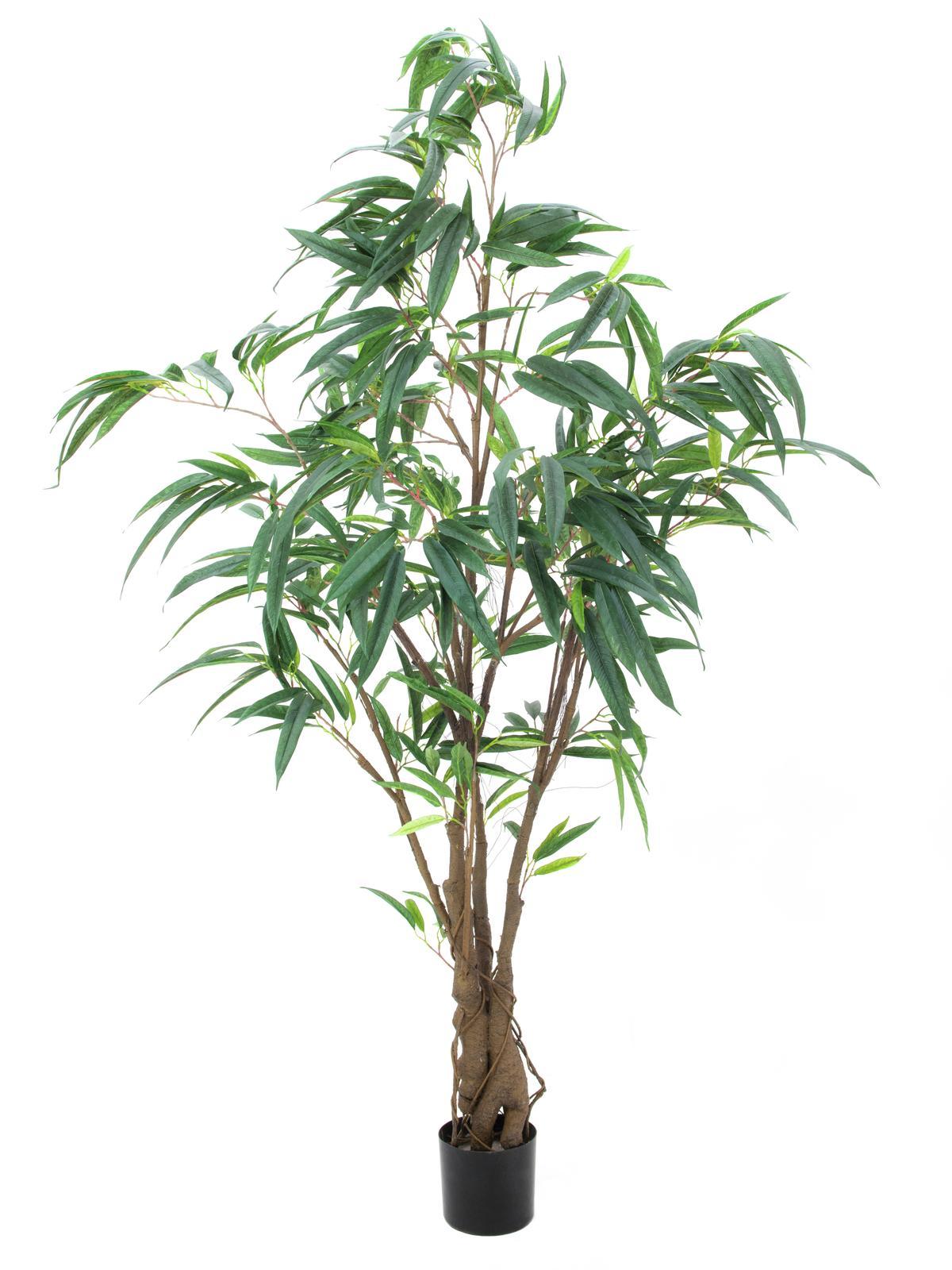 Image of   Kunstig Figen Longifolia, Tyk Stamme, 180cm
