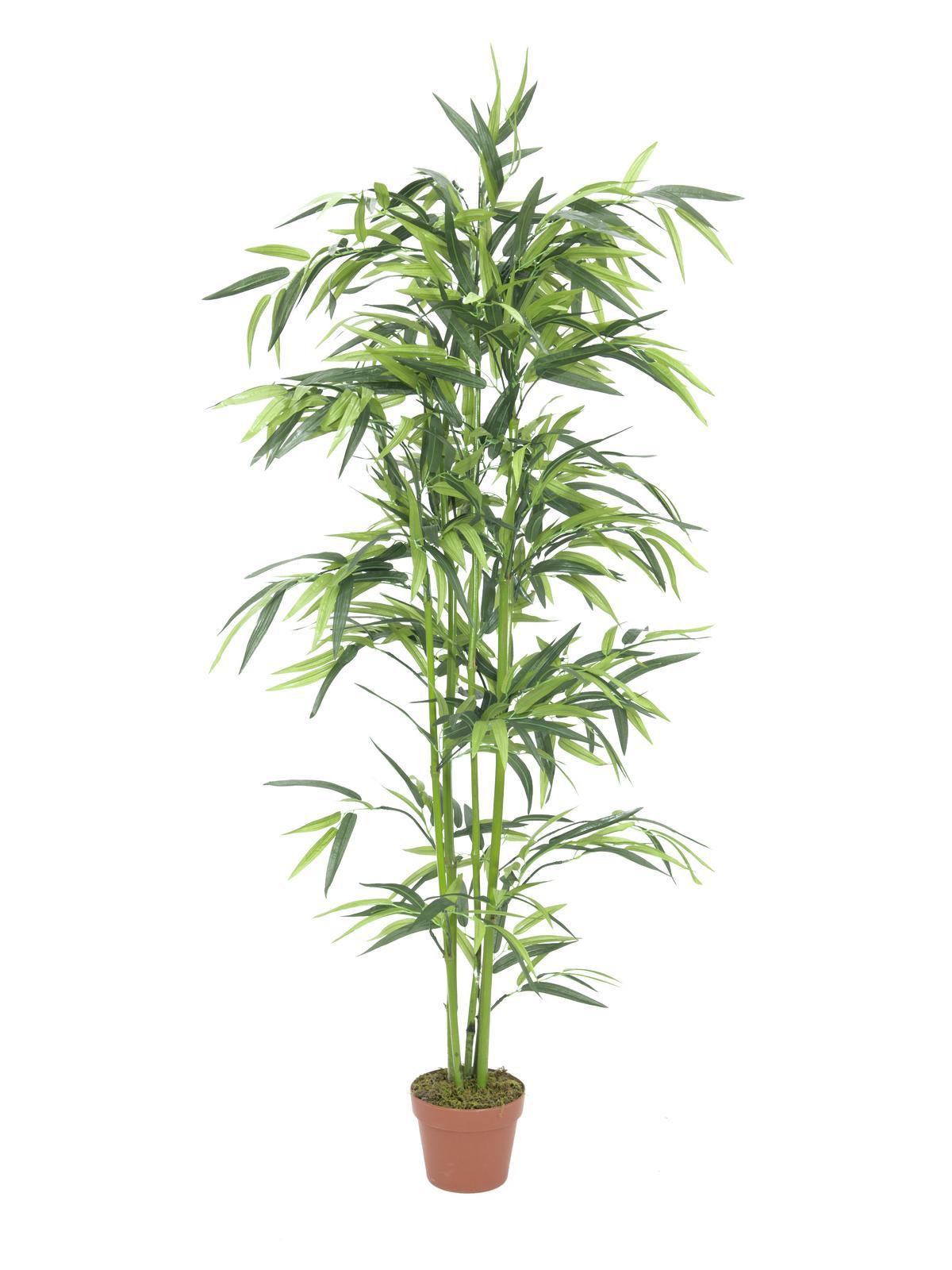 Image of   Kunstig Bamboo, 150cm