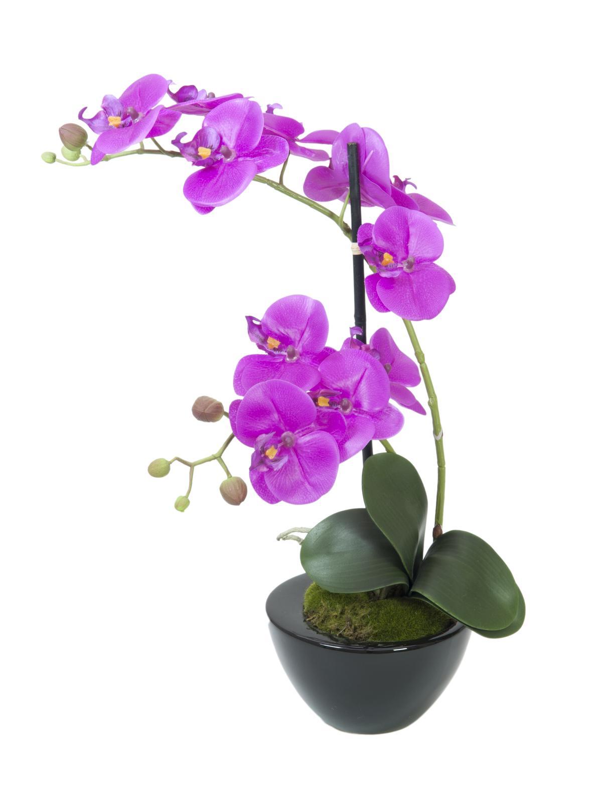 Image of   Kunstig Orkide i potte