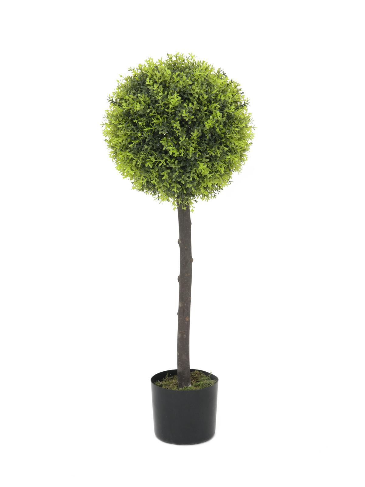 Image of   Kunstig Boxwood tree, 90cm
