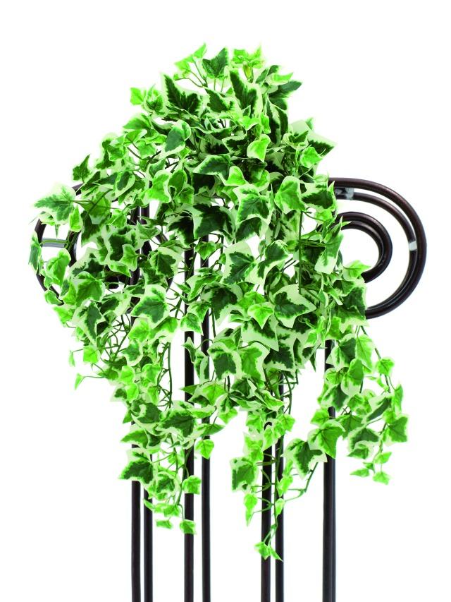 Image of   Kunstig Ivy tendril, green-white, 50cm