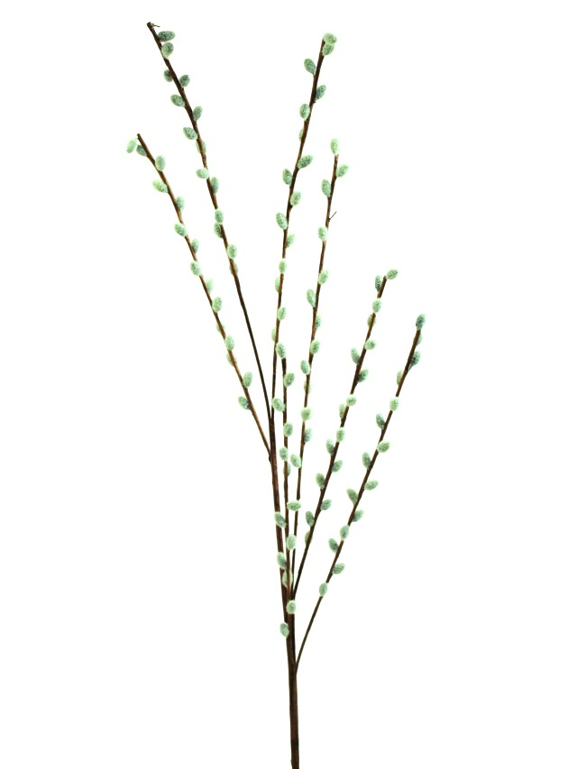 Kunstig  Pussy willow spray, 117cm