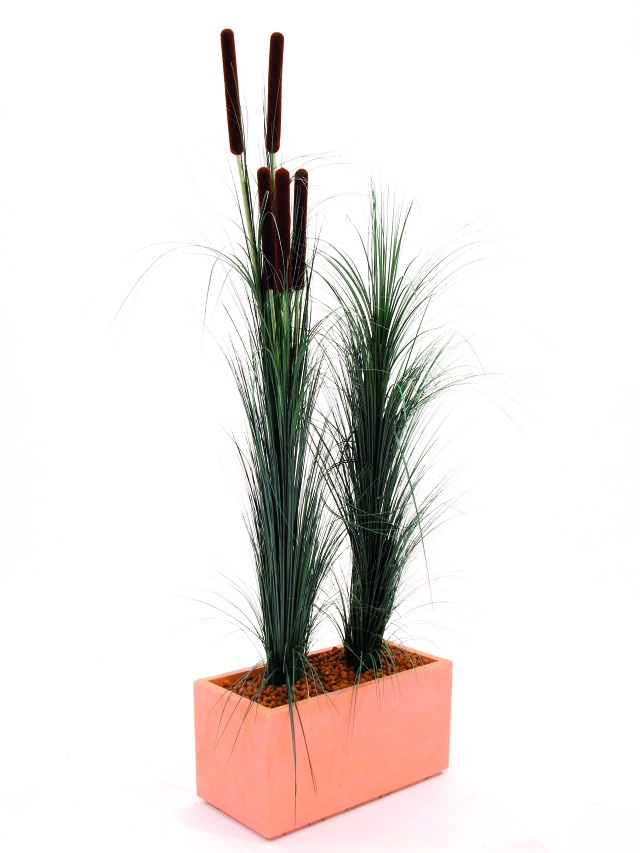 Image of   Kunstig Reed grass with cattail, dark-green,152cm