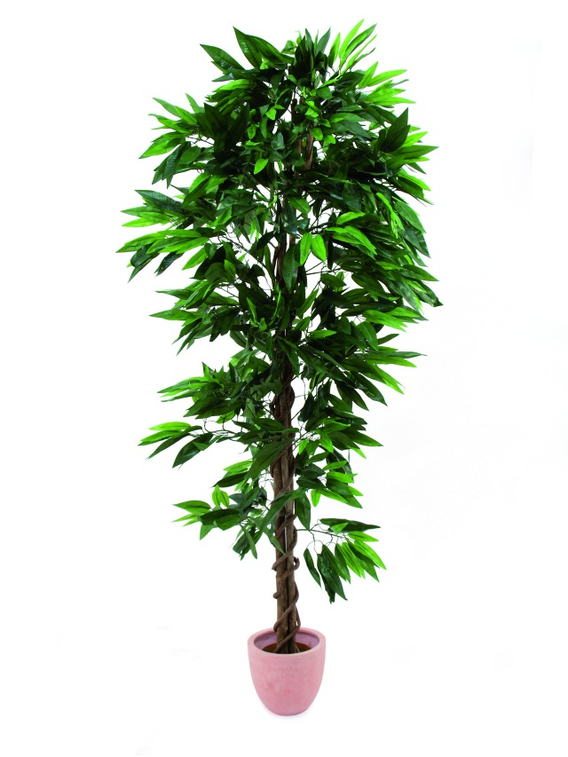Image of   Kunstig Jungle tree Mango, 210cm