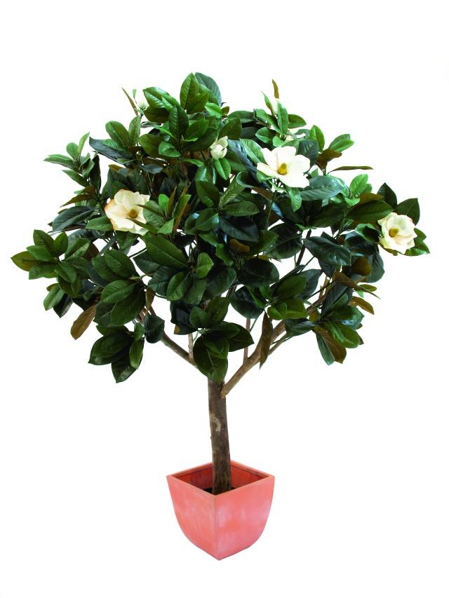 Image of   Kunstig Magnolia Tree, 150cm