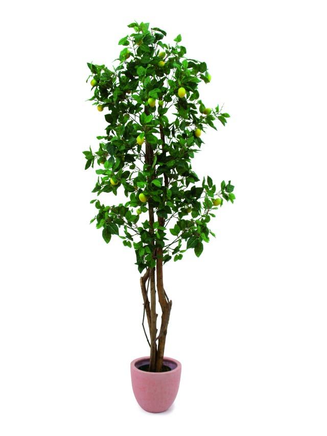 Kunstig  Lemon Tree, 180cm