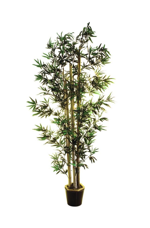 Image of   Kunstig Bambus m. naturlige stammer, 205 cm
