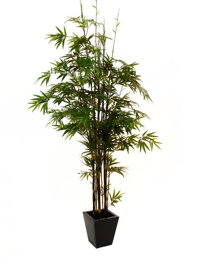 Image of   Kunstig Bambustræ med naturlig stamme, 225 cm