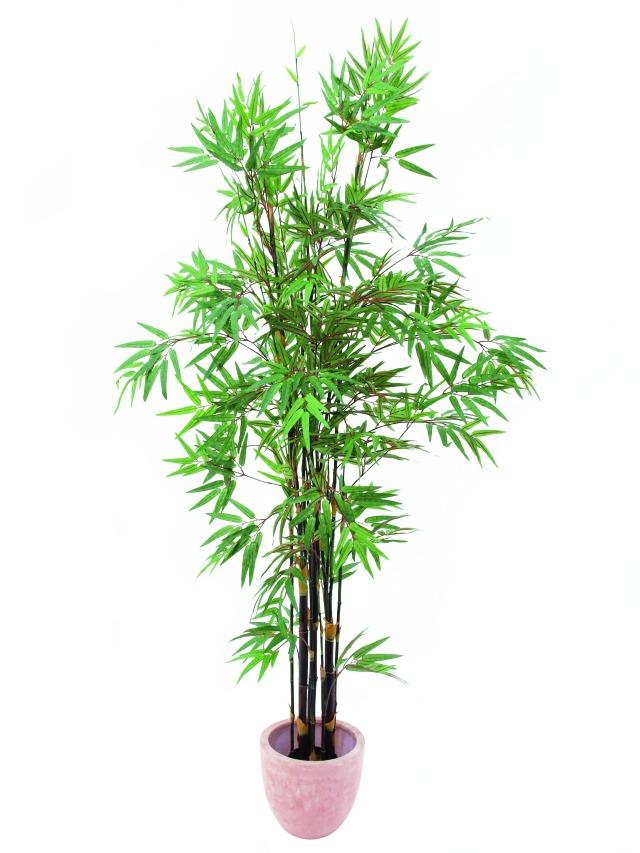 Image of   Kunstig Bambus, sort stamme, 210 cm
