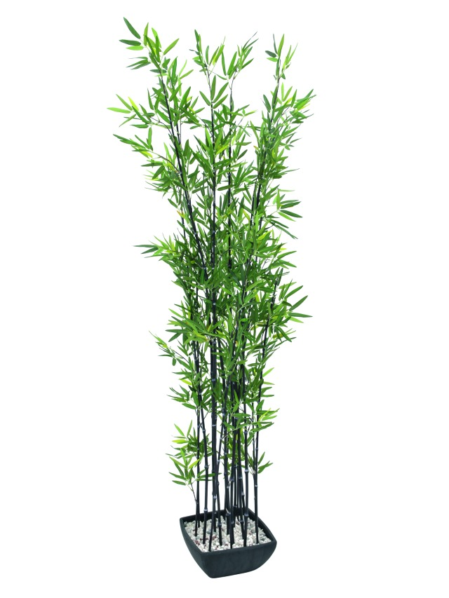Image of   Kunstig Bambus i Krukke, 180cm