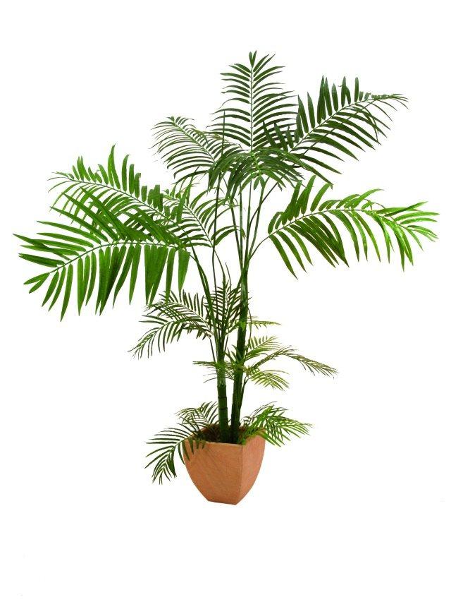 Image of   Kunstig Areca Palm, multistamme, 170cm