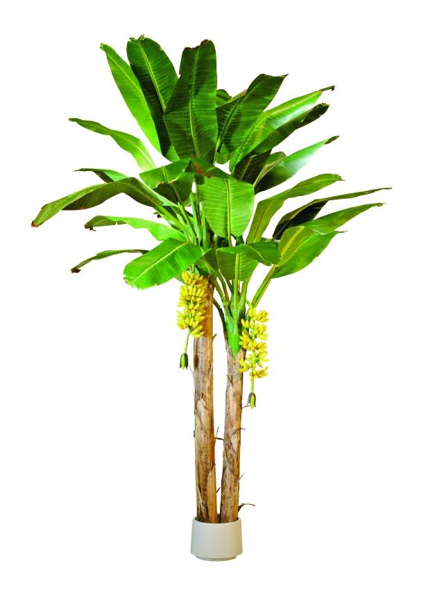 Kunstig  Banana tree, 440cm