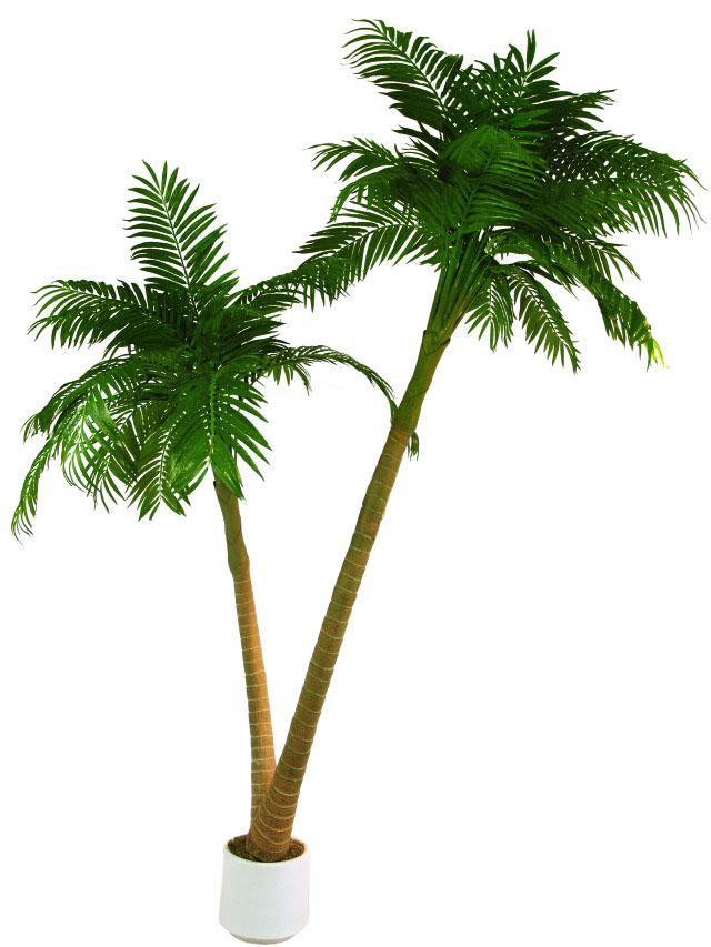 Image of   Kunstig Palm, 2-trunks, 305cm