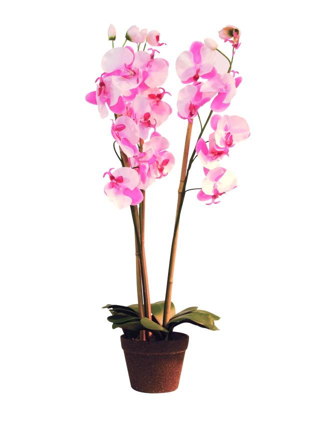Image of   Kunstig Orchid, rose, 80cm