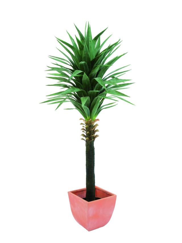 Image of   Kunstig Yucca palm, 165cm