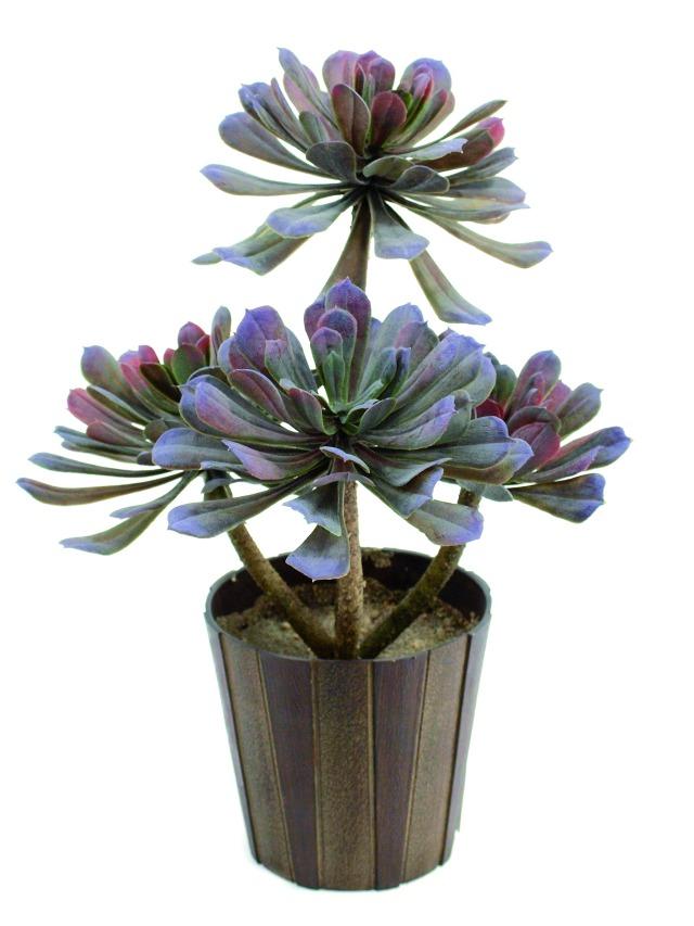 Kunstig  Aeonium sukkulent, olivengrøn, 30 cm