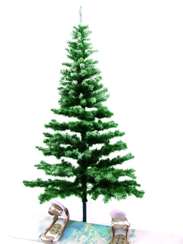Billede af Fir tree, snow-flocked, 240cm