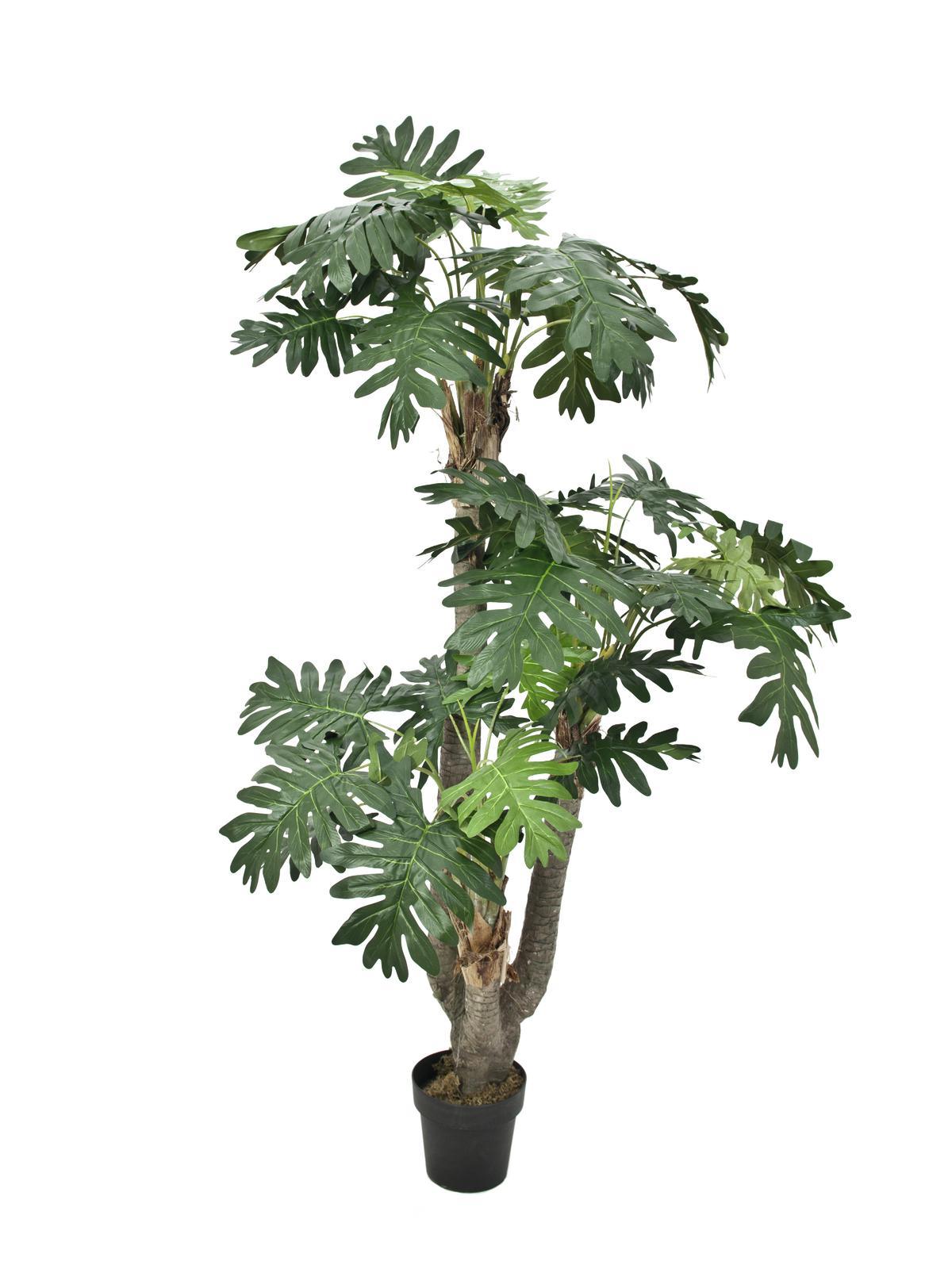Image of   Kunstig Philodendron Gigante, 200cm