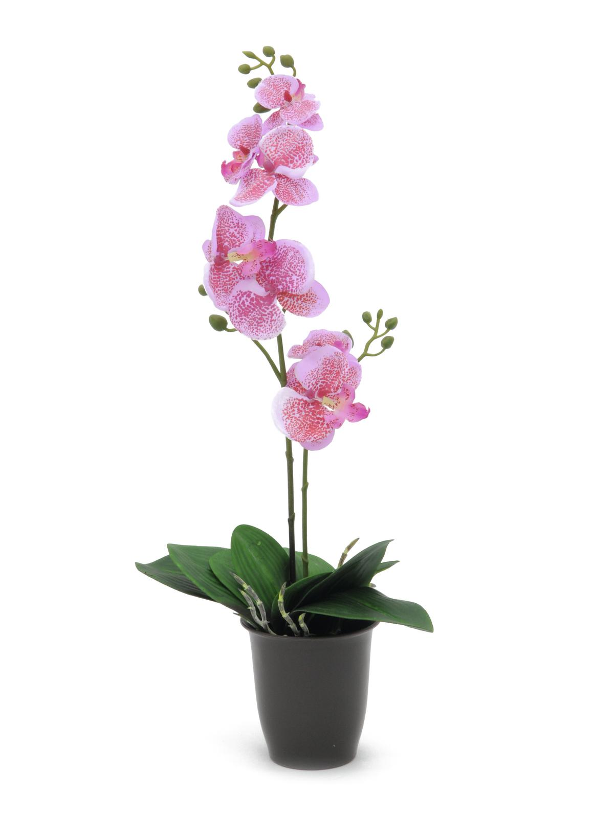 Image of   Kunstig Orchid, pink, 57cm