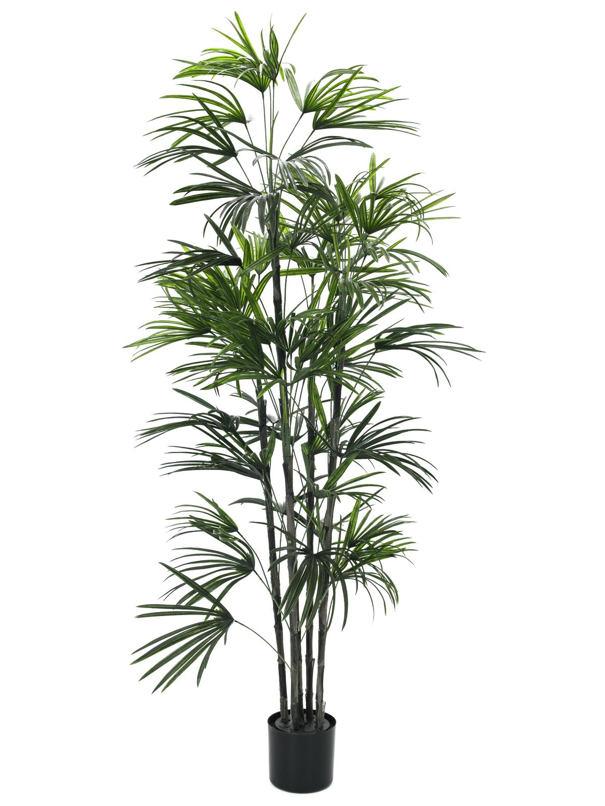 Kunstig  Fan Palm seedling, 150cm